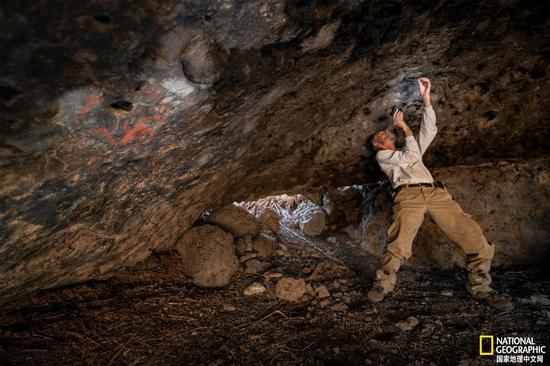 在南加州的风车洞(Pinwheel Cave),研究团队成员Jon Picciuolo发现了几个世纪前塞入洞穴墙壁裂缝中的咀嚼物(咀嚼过的植物)。洞穴的名字来自右侧的彩色风车。摄影:DEVLIN GANDY