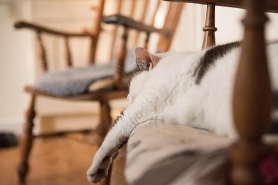 躺在沙發上看電視的你 | unsplash
