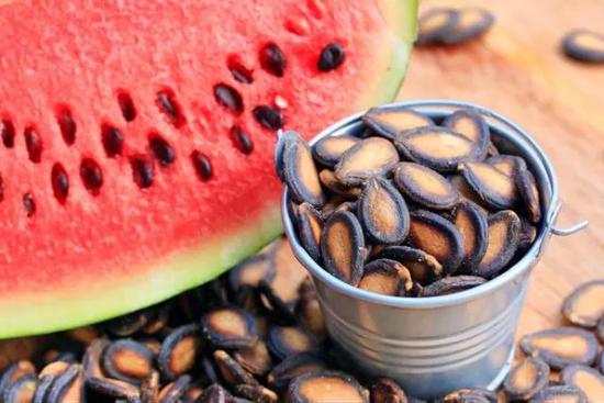 許多瓜類的種子外種皮都很堅硬,而且十分扁平 圖片來源:https://www.femina.in/wellness/diet/benefits-of-watermelon-seeds-149318.html