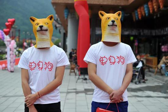139彩票网是真的假的_从火锅到法餐,上海这10家餐厅喊你家狗狗来吃饭了!