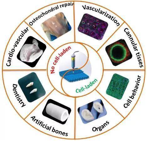 图1 生物3D打印在生物医学中的应用