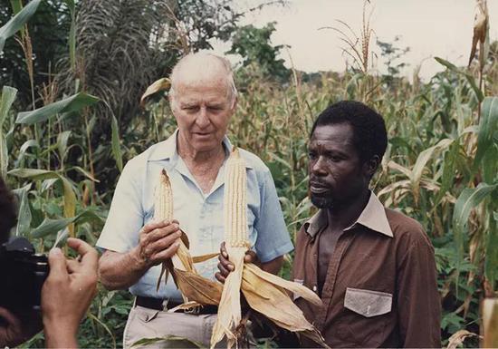 图:布劳格在访问非洲社区和玉米地,1990