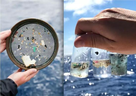 科学家们在他们访问的海洋的每一个地方都发现了塑料和微塑料|图片来源:eXXpedition / Lark Rise Pictures