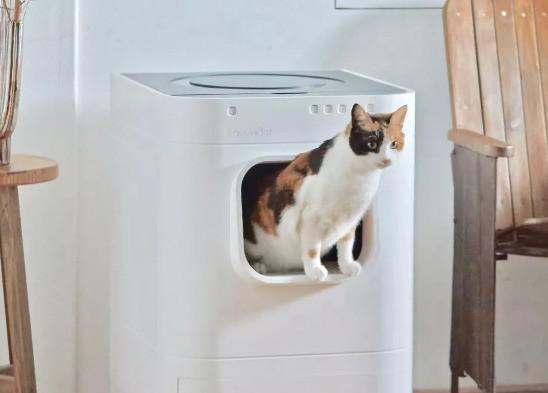 给家里猫咪准备的高科技厕所!售价六千多