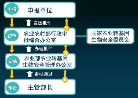 图6 我国农业转基因生物安全审批流程