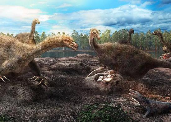 非鸟兽脚类恐龙(包括伶盗龙)可能会守卫自己的巢,使其不受捕食者的攻击。