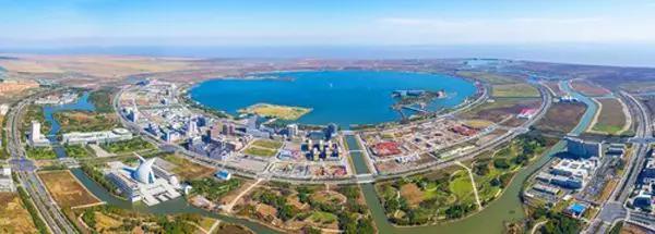 上海自贸区临港新片区。墨齐秋摄