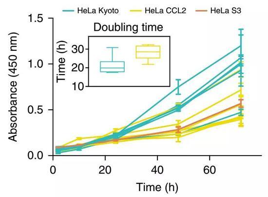 不同来源的海拉细胞,复制速率差异巨大