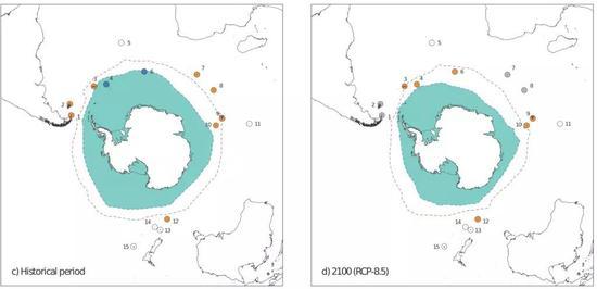 左图为1981-2005年的情况,右图为2100年的预测情况。图中蓝色阴影区域表示南极海冰的范围,虚线表示锋面的位置,不同数字代表南极大陆周围的不同岛屿。岛屿的不同颜色的意义如下:橙色表示可以作为企鹅的栖息地;灰色表示距离锋面太远,无法作为栖息地;白色表示岛上没有企鹅;蓝色表示岛上太寒冷,不能作为栖息地。图中8号岛屿代表科雄岛所在的克洛泽群岛,我们可以看到,目前该群岛适宜王企鹅生存,但是到本世纪末,该岛屿就不再适宜王企鹅生存。图片来源:参考文献[6]