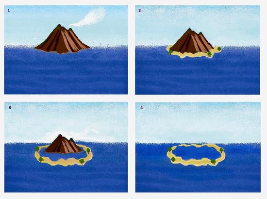 """达尔文""""沉降说""""示意图:1~4分别为火山岛、裙礁、堡礁、环礁   Lily's Art Studio"""