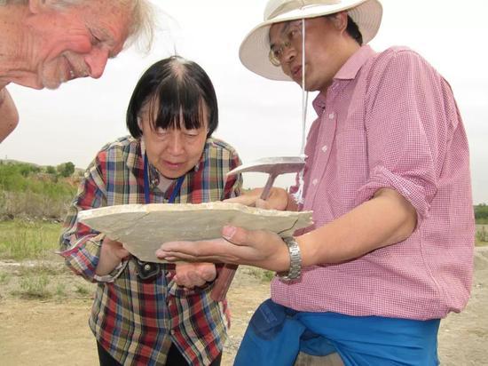 张弥曼在野外工作(2011年,新疆)