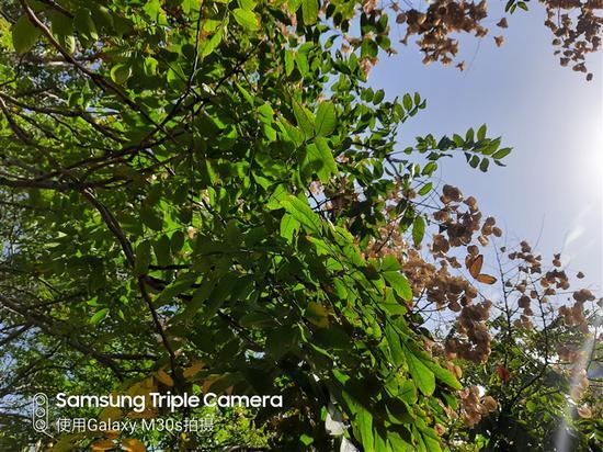 天马门户客户端 荣耀9X还没发布就被曝光了,麒麟810+升降式镜头全面屏