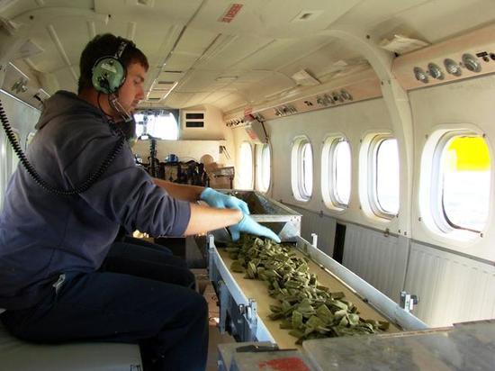 飞机上的饵料投放机(图片来源:ontario.ca)