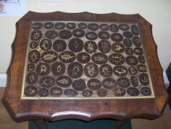 粪化石桌,如今收藏于莱姆雷吉斯的博物馆。图片来源:Lyme Regis Museum