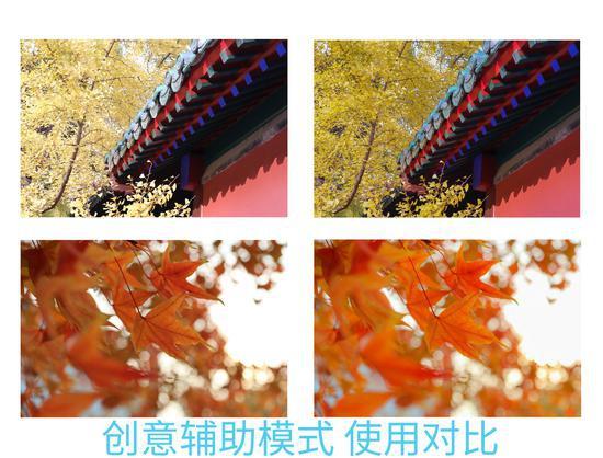 """太阳城娱乐登陆网址 短视频监管不能""""一阵风"""""""