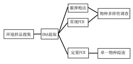 eDNA的工作流程(图片来源:参考文献5)
