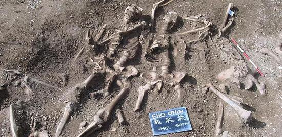 在牛津圣约翰学院发现的乱葬岗中的被屠杀的维京人。| 图片来源:Thames Valley Archaeological Services