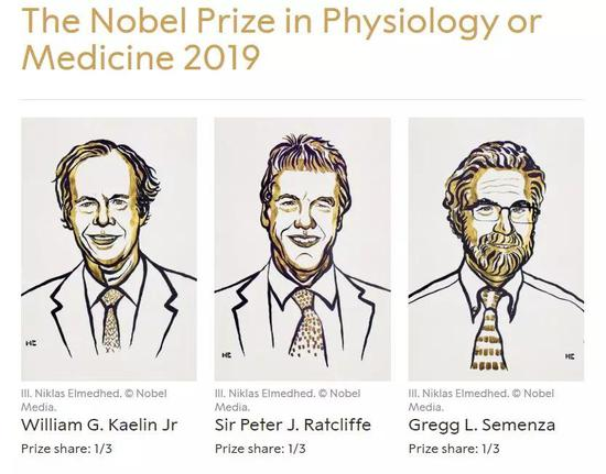 """祝贺!""""氧感知通路""""获2019年诺贝尔生理学或医学奖诺贝尔生理学氧感知通路医学奖"""
