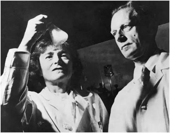 图丨1947 年的诺贝尔生理学或医学奖得主卡尔·科里和格蒂·科里夫妇