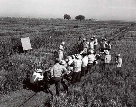 图:布劳格与受训者们一起在墨西哥学习,1972