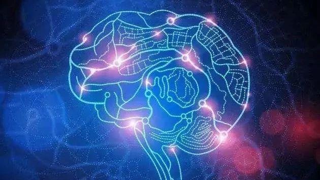 """脑网络组图谱,让人脑有了精准""""地图"""""""