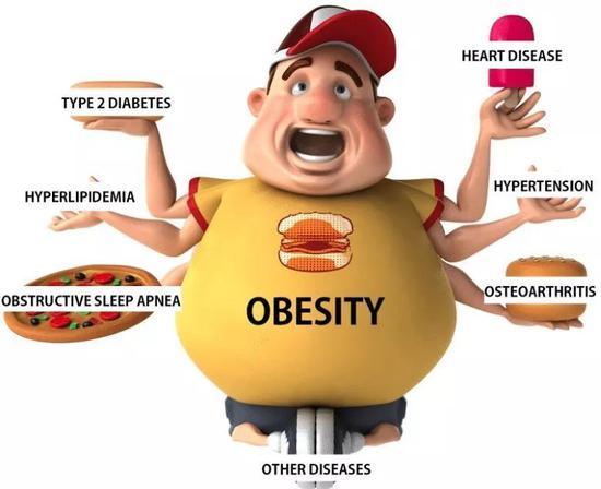 肥胖会增加各种疾病的风险