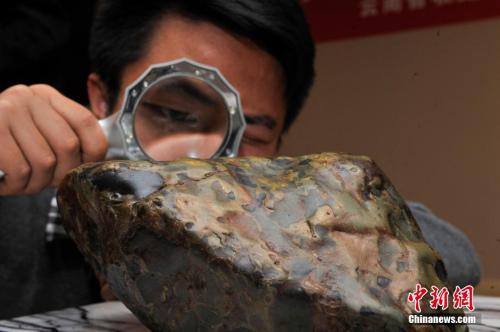 资料图:一名陨石收藏家的藏品在昆明展出。中新社记者 刘冉阳 摄