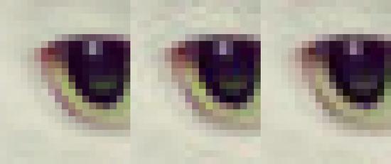 20x24像素猫眼图片,左:未压缩,中:libjpeg压缩,右:Guetzli压缩,右图振铃效应更轻微且体积更小