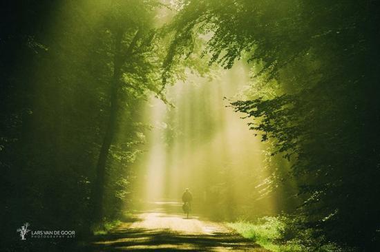 荷兰摄影师Lars van de Goor摄影作品