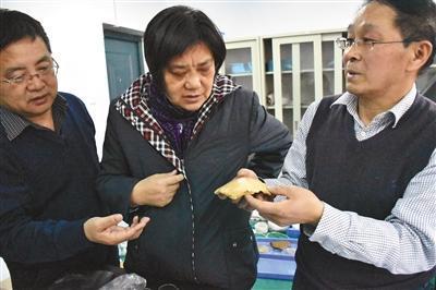 3月7日,李占扬(右一)等专家研究许昌人化石。