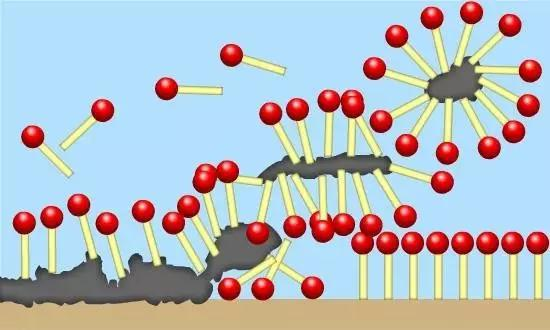 图1、表面活性剂结合并带走污渍