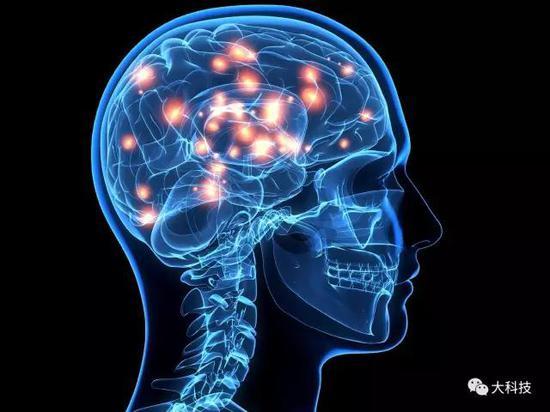 大脑运算机制:大规模并行系统