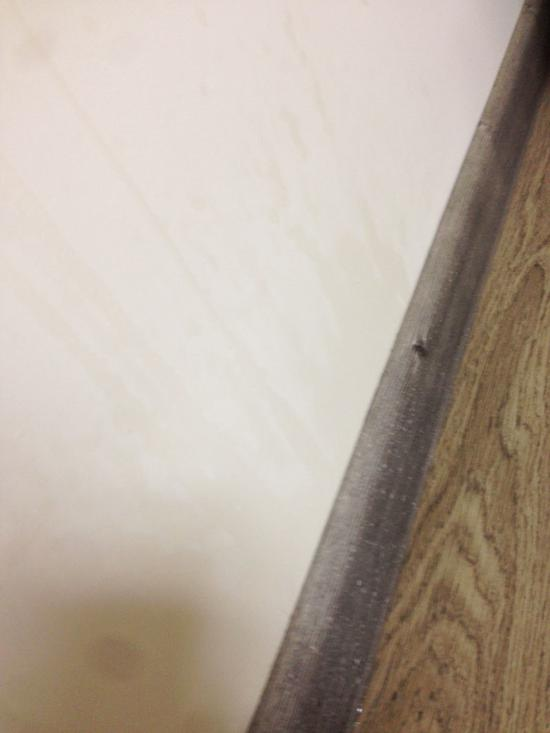 主卧墙面水迹明显