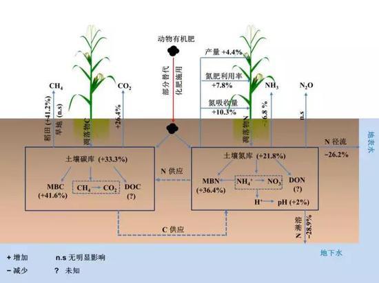 动物有机肥还田部分替代化肥施用对于粮食安全、活性氮损失及温室气体排放的综合影响 (结果为替代比例为0~100%的平均值)