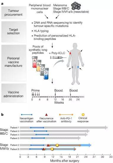 为高危黑素瘤患者生成个性化新抗原癌症疫苗 Wuet al。