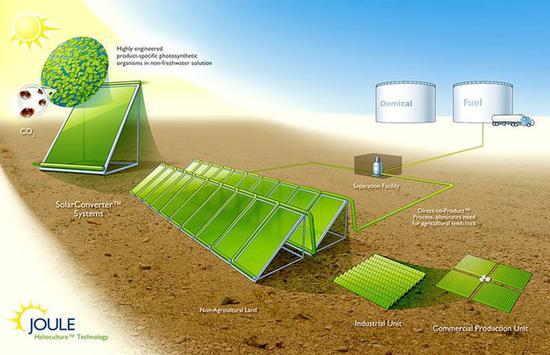 人工光合作用将成为未来汽车主要能源