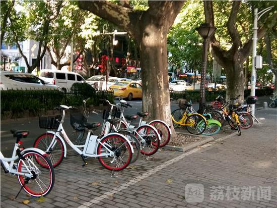 南京街头的共享电单车。荔枝新闻图