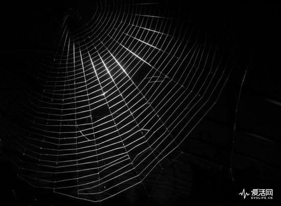 这种扯淡早在丝绸之路被打掉的时候就应该被埋进耻辱的垃圾堆了,暗网确实黑暗,但它远没有可怕到这么夸张的程度。