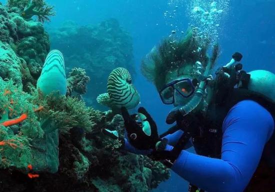 列昂尼德·莫罗兹,一位在位于佛罗里达的惠特尼海洋生物实验室工作的神经学家,认为栉水母区别于其他动物而独立演化出了神经元。图片由列昂尼德·莫罗兹提供