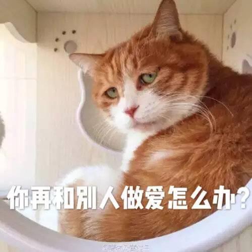 吃瓜群众每天坐等八卦:李雨桐今天更新微博了_鬼脸妹子