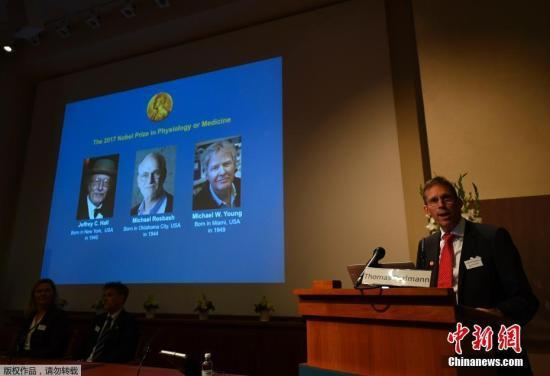 """当地时间10月2日中午,2017年诺贝尔生理学或医学奖揭晓,杰弗瑞?霍尔(Jeffrey C。 Hall)、迈克尔?罗斯巴什(Michael Rosbash)和迈克尔?杨(Michael W。 Young)凭借""""发现控制生理节律的分子机制""""荣获该奖项。"""