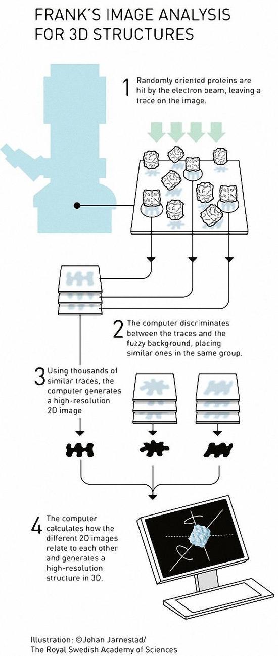 冷冻电镜是什么?为什么能够斩获今年诺贝尔化学奖?