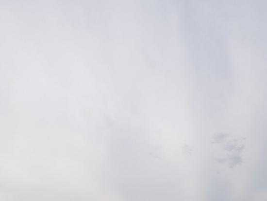f/8.0光圈