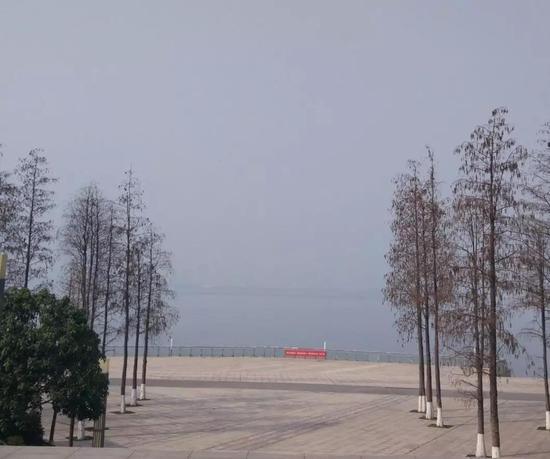 这条江是长江,对面是汉口。我很久没去了。(摄于2月3日)