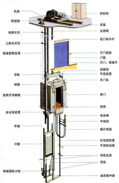 《【多彩联盟登陆】电梯下坠要不要按楼层键?进来看保命指南!》