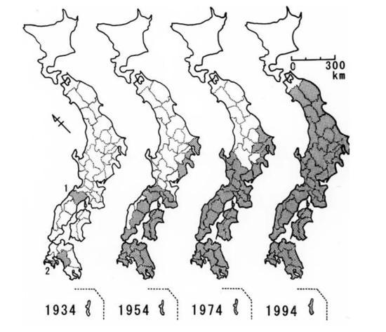 松材线虫在日本的扩散进程 图片来源:参考文献[4]
