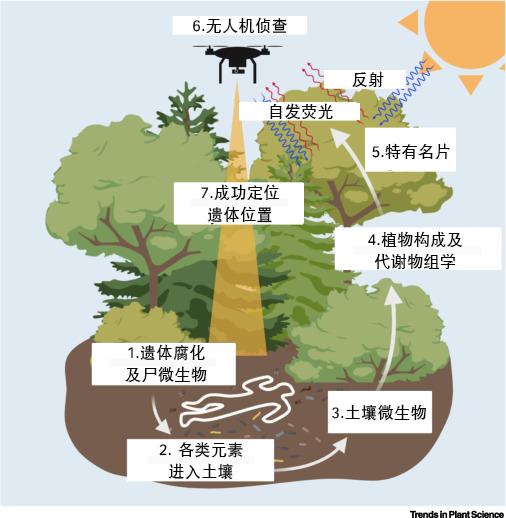 图片来自论文,翻译:贺紫宸