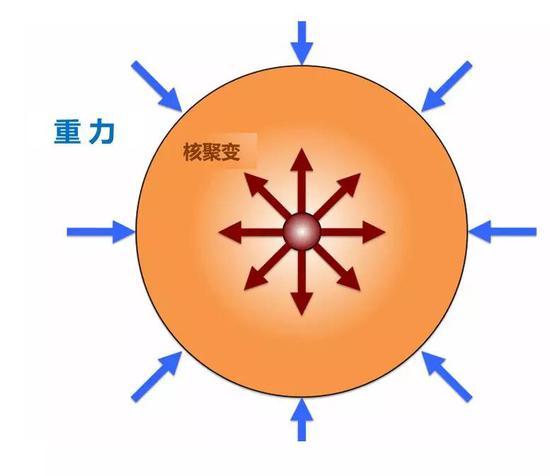 (使恒星向内坍缩的重力与使恒星向外膨胀的核聚变反应在主序恒星阶段达到平衡。原始图片来源:http://large.stanford.edu/courses/2011/ph241/olson1/)