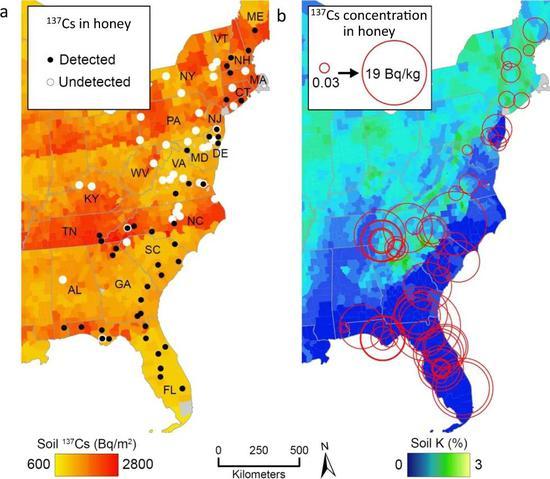 核爆试验半世纪后,美国的蜂蜜里仍有放射性成分