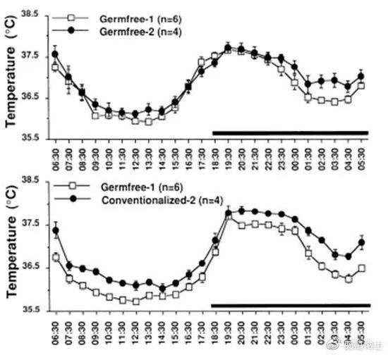 接種腸道微生物可以升高體溫(圖片來自:參考資料10)